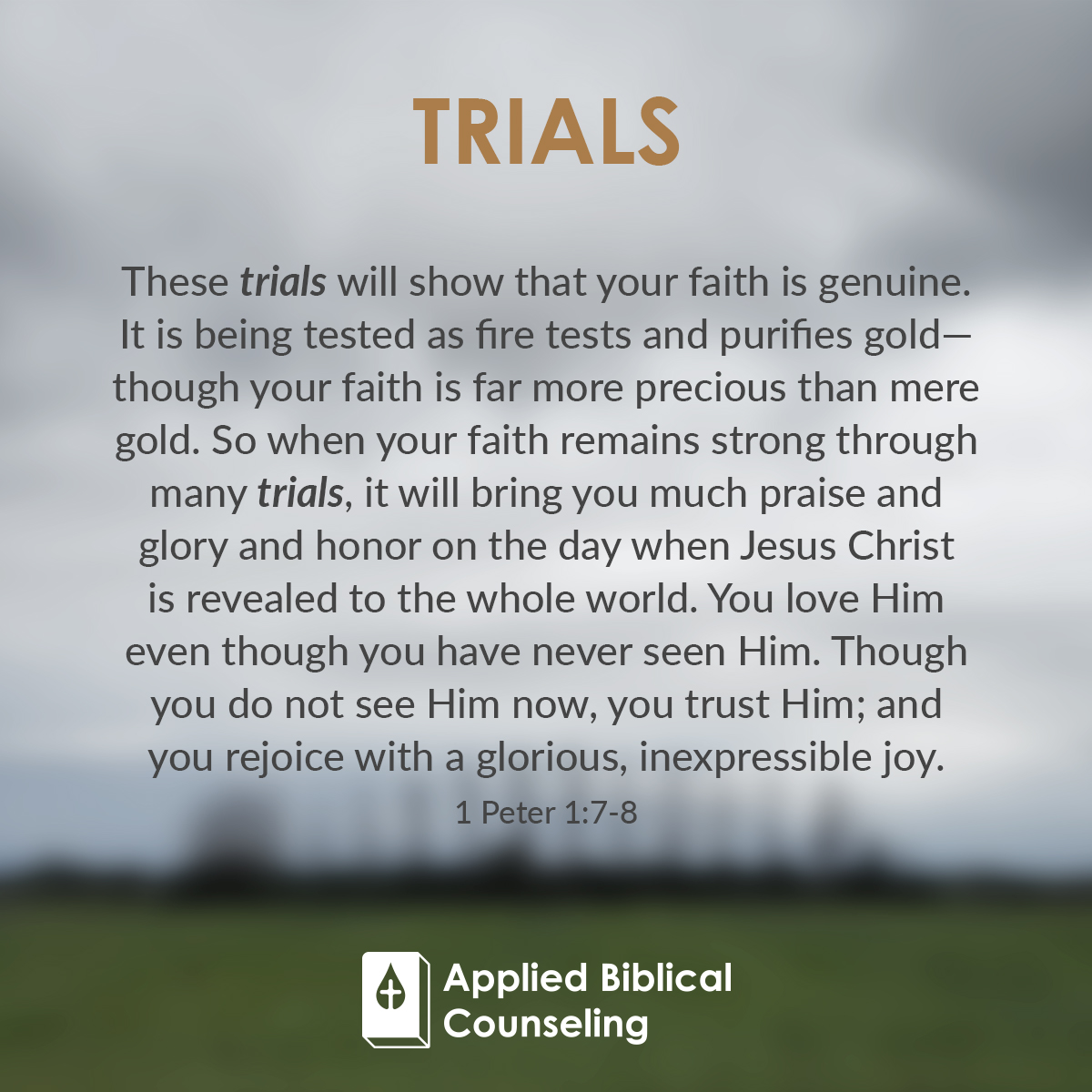ABC_Facebook-w6-trials-1