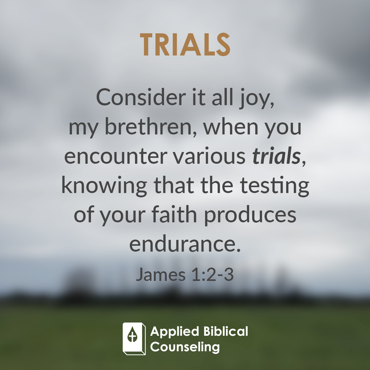 ABC_Facebook-w6-trials-2
