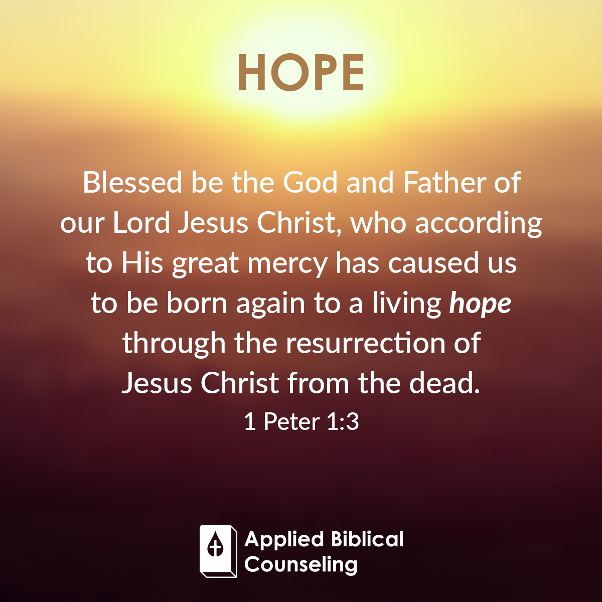 ABC_Facebook-w7-hope-1