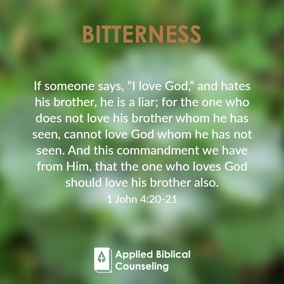 applied biblical counseling facebook w14 bitterness 5