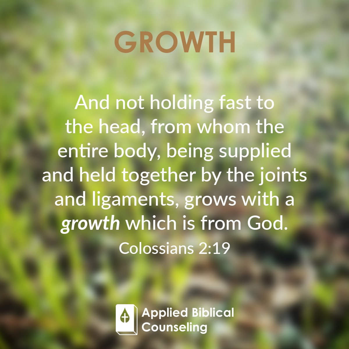 Growth 1