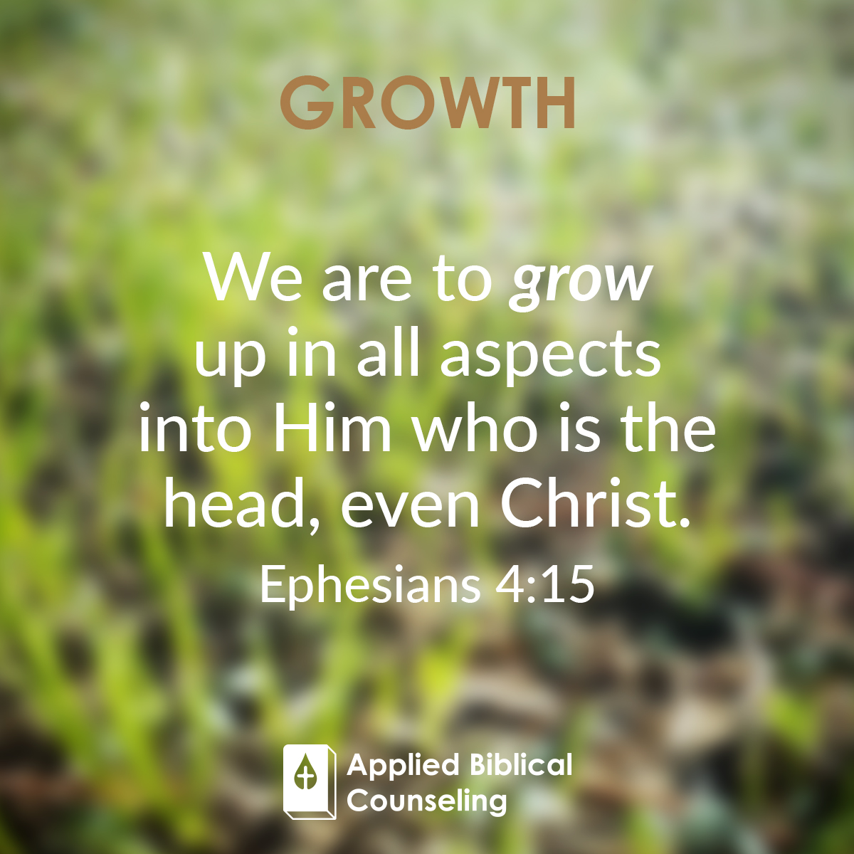 applied biblical counseling facebook w15 growth 2