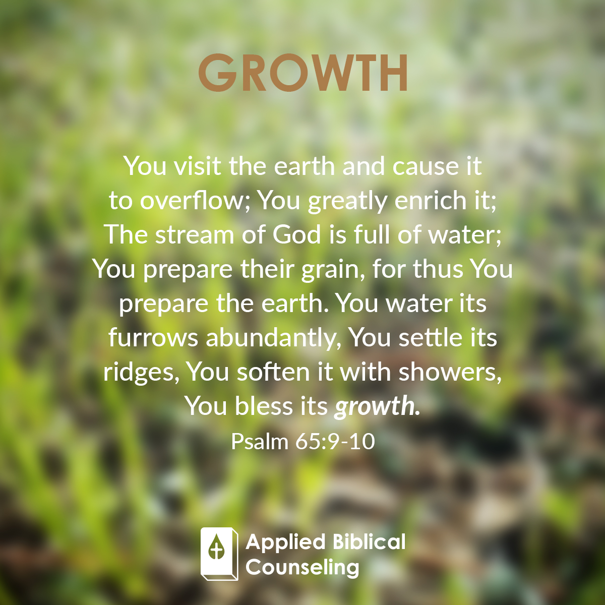 applied biblical counseling facebook w15 growth 3