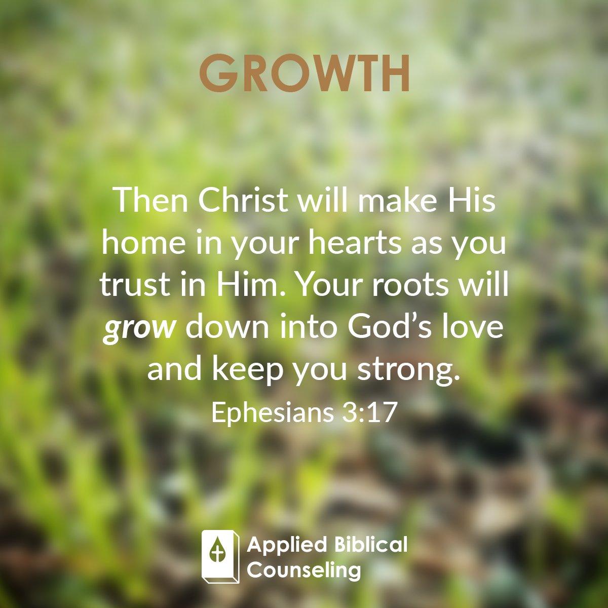 Growth 4