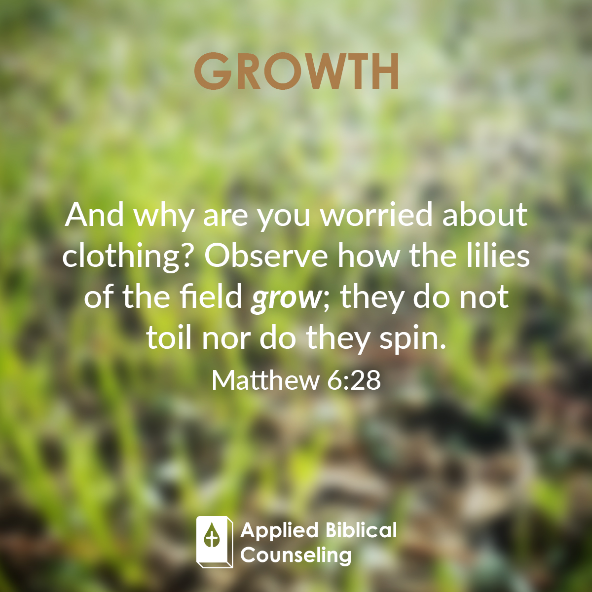 applied biblical counseling facebook w15 growth 5