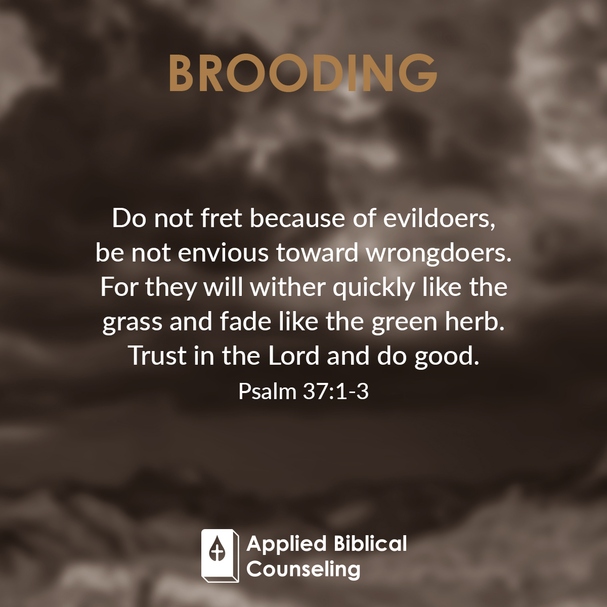 Brooding Applied Biblical Counseling 5