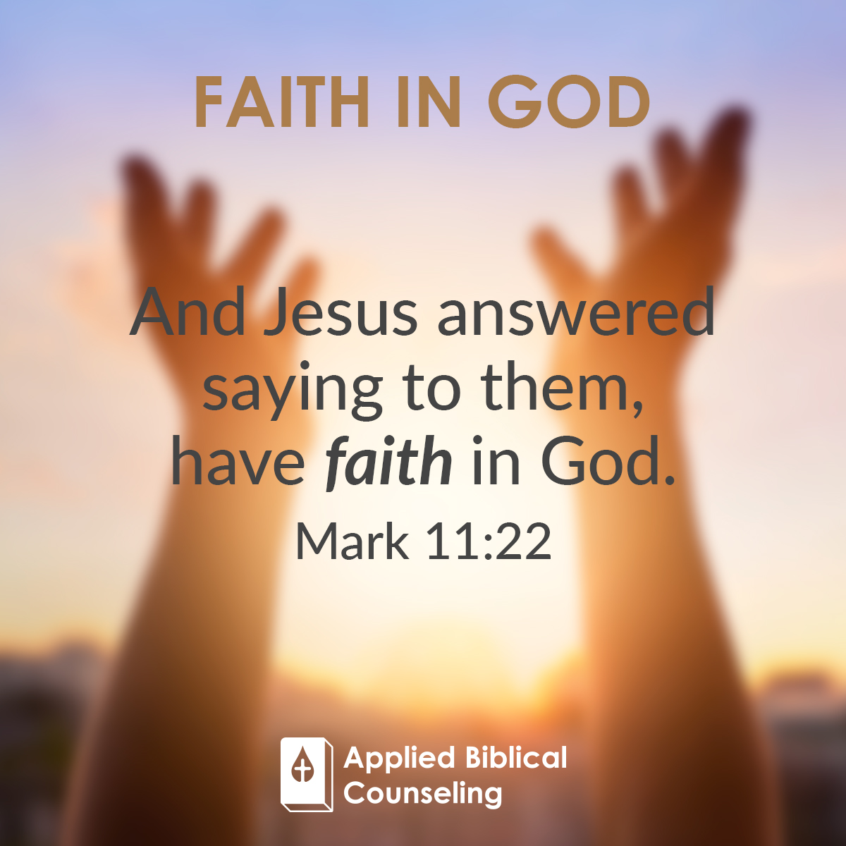 Faith In God Applied Biblical Counseling 5