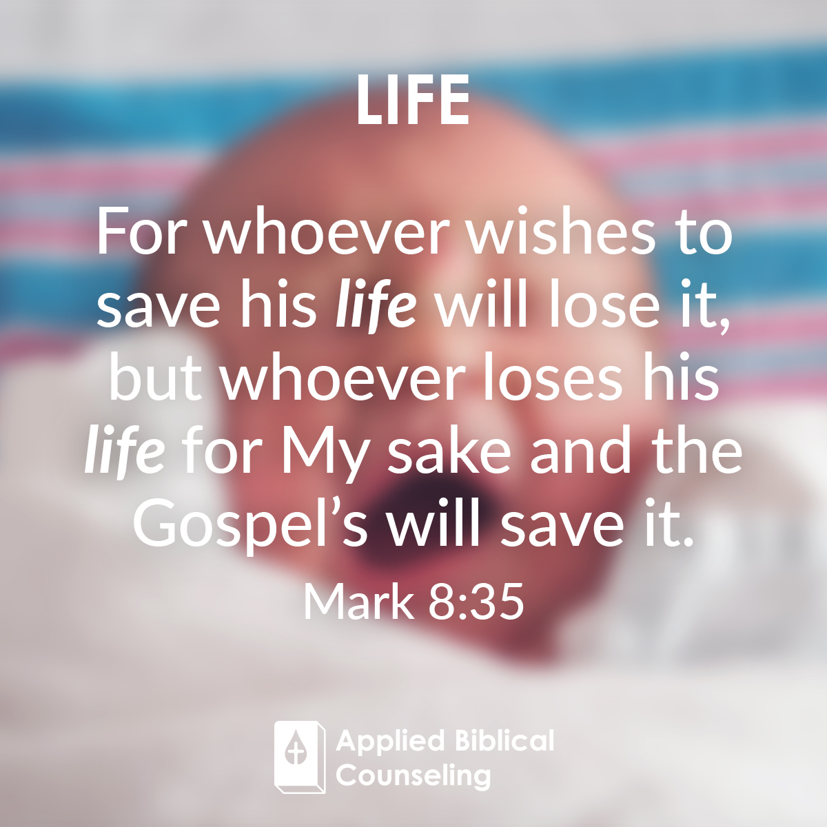 Life Applied Biblical Counseling 4